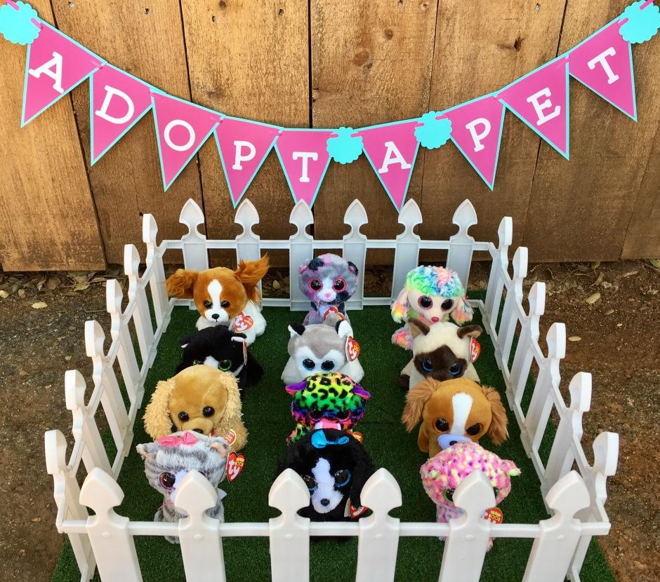 Pet Adoption Party Kerricreates